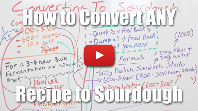 How to Convert Any Bread Recipe to Sourdough - Video Lecture