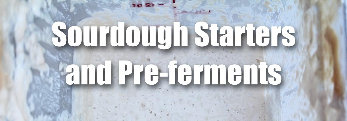 Stella Culinary School Podcast Episode 21| Sourdough Starters and Pre-ferments