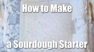 How to Make a Sourdough Starter - Video Technique