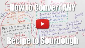 How to Convert Any Recipe To Sourdough - Video Lecture